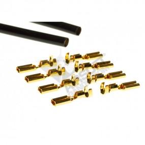 Motor Gold Pin - Prometheus